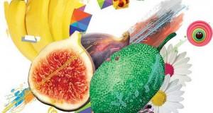Dashdot – Lowbotic Fabric (Acid Fruits)