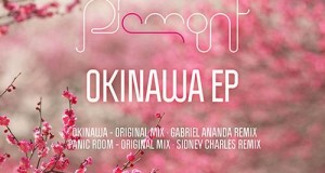 Piemont – Okinawa EP (The Factoria)