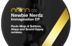 Newbie Nerdz – Imagination Remixes (Neim)