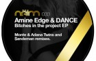 Amine Edge & Dance – Bitches In The Project EP (Neim)