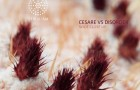 Cesare vs. Disorder – Wide Close Up EP (Serialism Records)