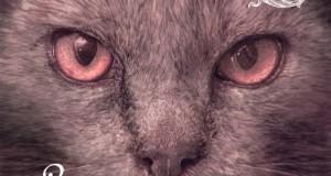 John Monkman & Pete Tong – The Bumps EP (Suara)