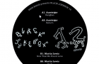 Aussteiger- Shir Khan Presents Black Jukebox 12 (Exploited)