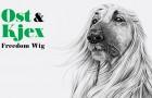 Premiere: Ost & Kjex – ChaChaCha ft JAW [Diynamic Music]