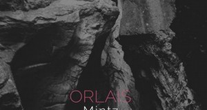 Mintz – Orlais (Seven Villas)
