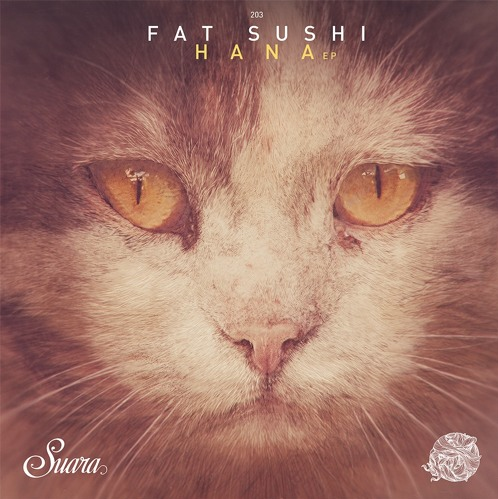 2015-12-08 09_00_57-Fat Sushi - Hana (Original Mix) __ 128kbit in Fat Sushi - Hana EP __ Suara