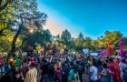 Desert Hearts: A Festival Field Study