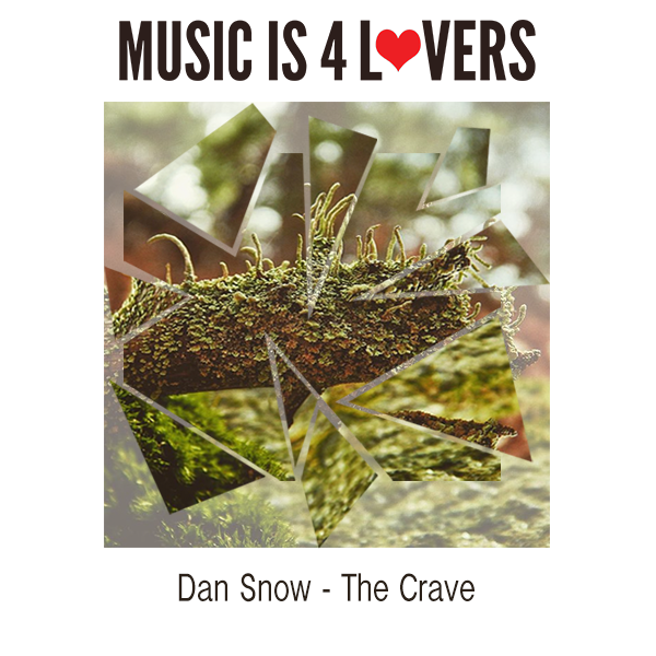 Dan Snow The Crave Cover