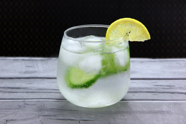 Make-Gin-and-Tonic-Step-12-Version-2
